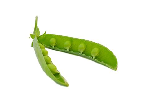 Pea Pod Green