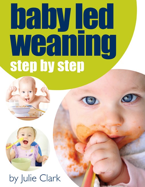 Baby Led Weaning, Step by Step Book by Julie Clark